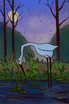 Heron, Bird, Wild, Nature, Life, Forest