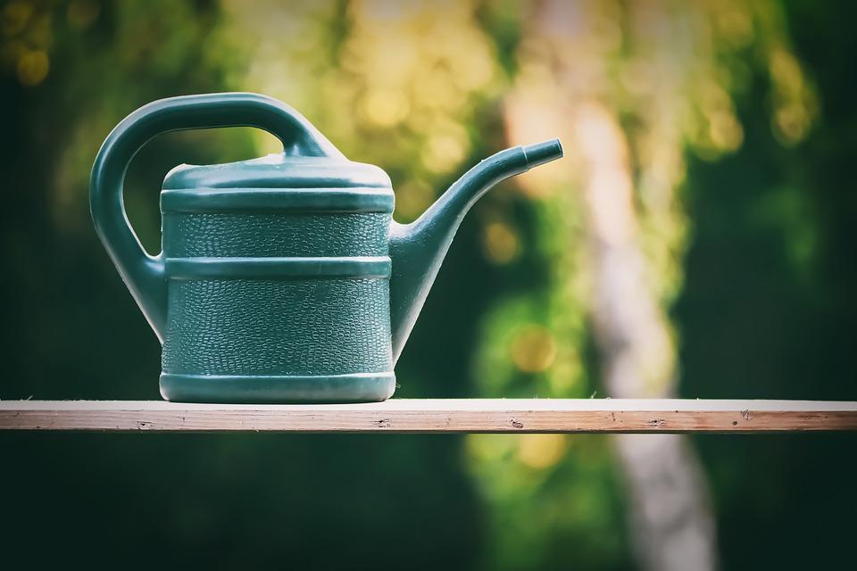 じょうろ, ガーデニング, 花, 自然, 夏, スプリング, 庭師, 庭, かんがい, 植物, 庭園を維持
