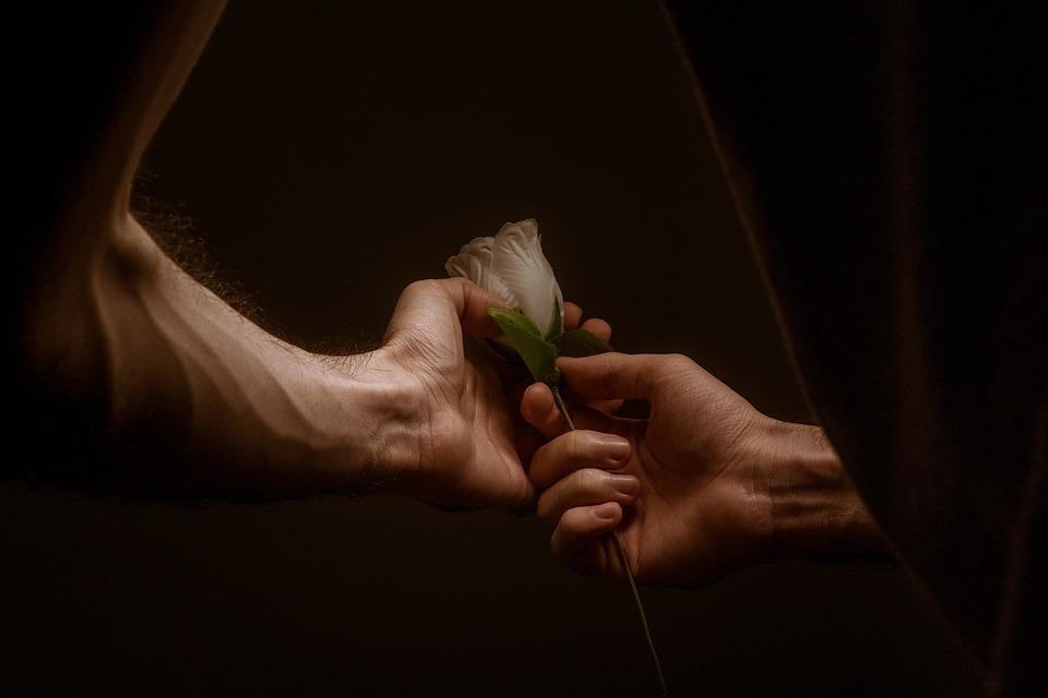 Manos, El Amor, Rose, Juntos, Pareja, Amantes De La