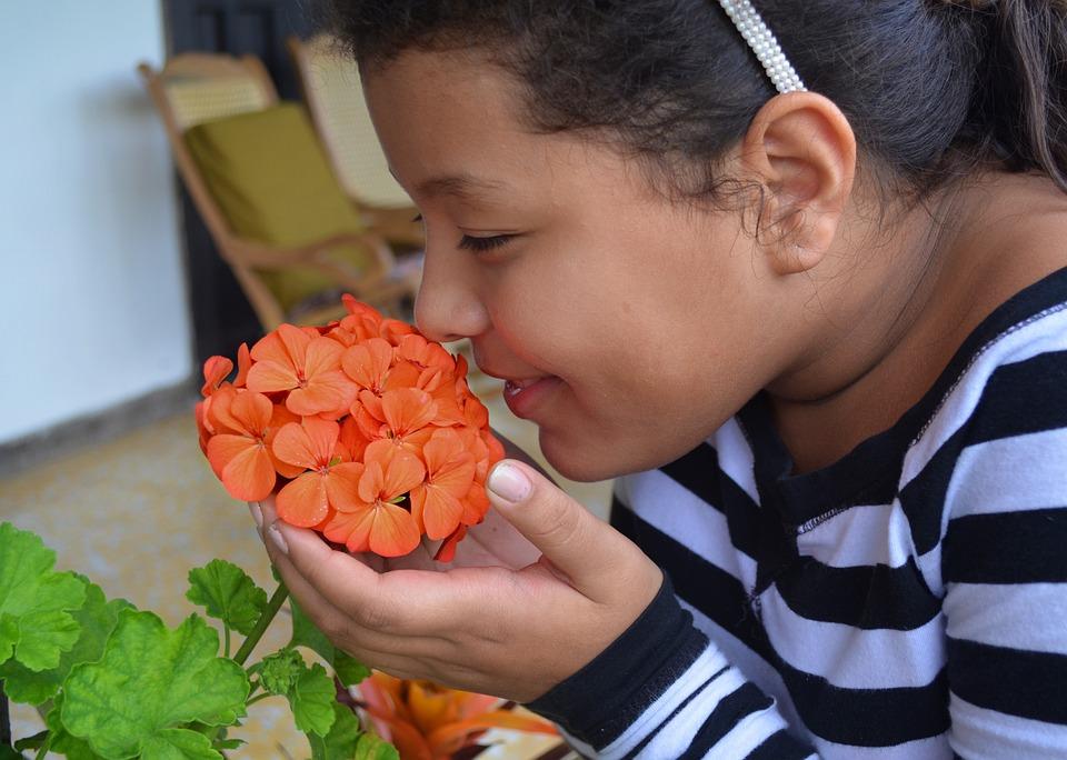 Flor, Olor, Niña, Respirar, Alergia, Sabor