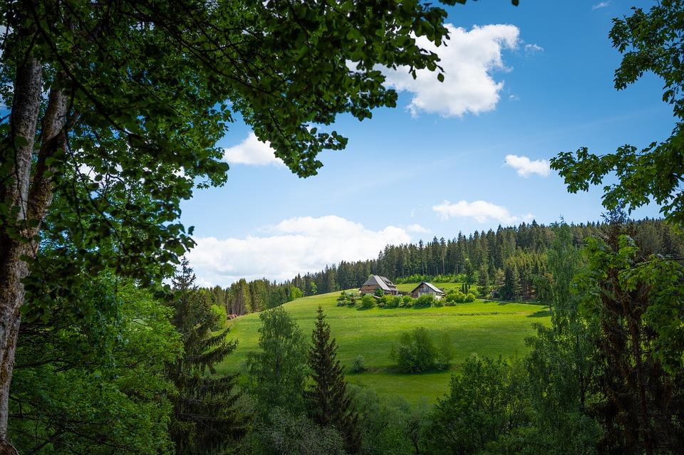 black forest 5222495 960 720 » 10 wunderschöne Reiseziele für ihren Urlaub in Deutschland