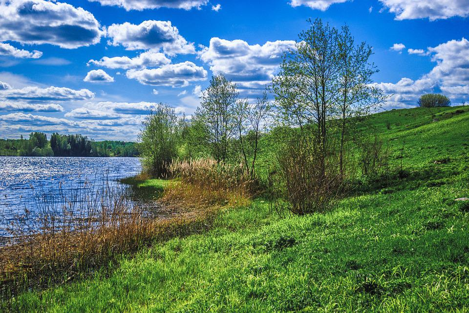 Joki Shelon Kesä - Ilmainen valokuva Pixabayssa