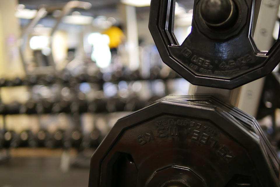 Dumbell, Weights, Gym, Fitness, Exercise, Equipment