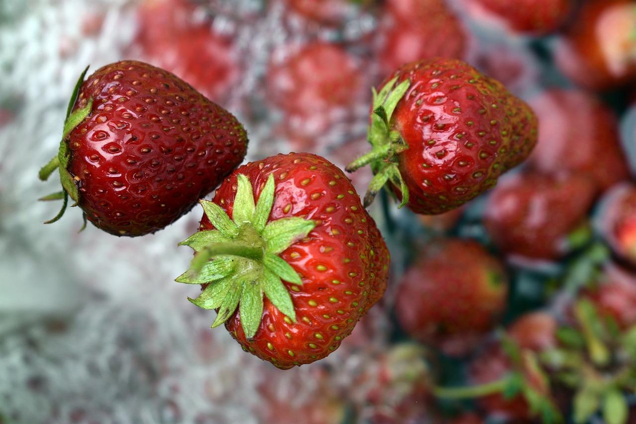 Mengapa strawberry disebut strawberry, padahal bukan berry?
