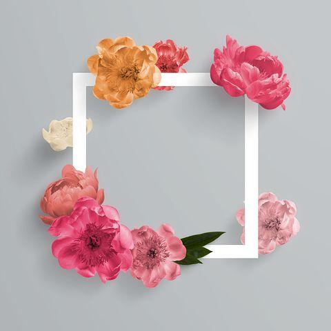 ボックスに書か, 花, テンプレート, Web ページ, Facebook アインの集客マーケティングブログ