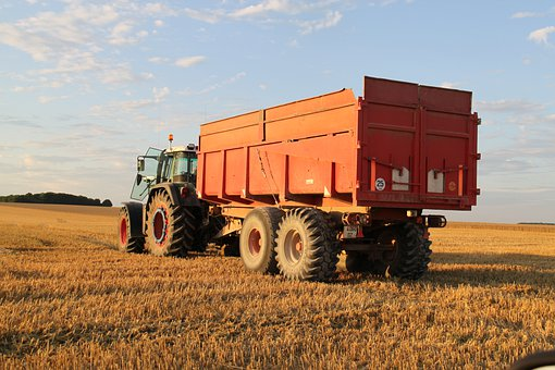 Fields, Wheat, Harvest, Tractor, Faucher