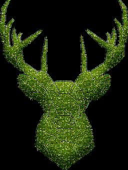 40 Free Deer Head Deer Illustrations Pixabay
