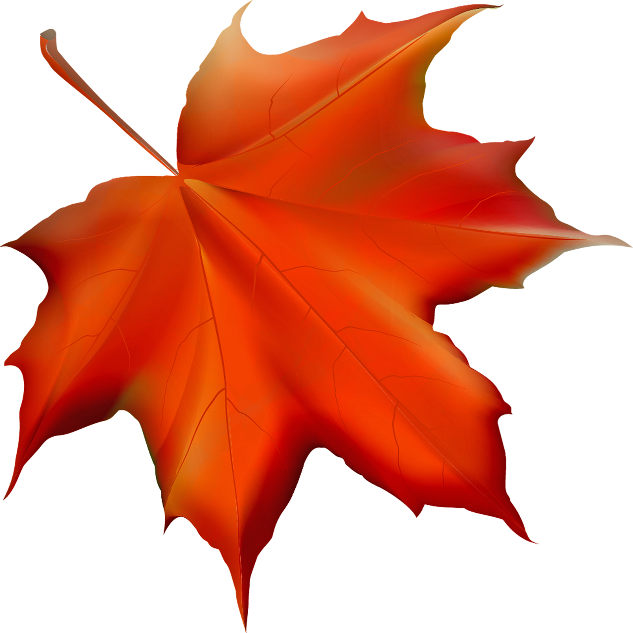 Fall Leaf Autumn Leaves - Free image on Pixabay