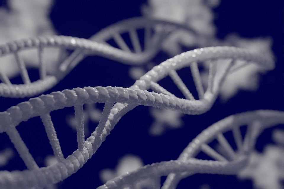 Кто такой генетик какие болезни лечит и когда нужно к нему обращаться