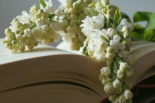 Livro, marcador com flores