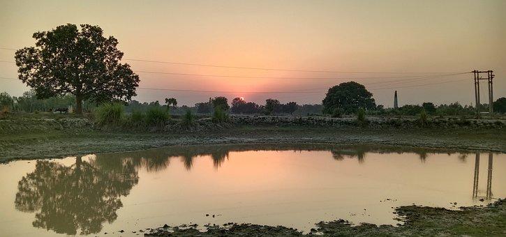 Sunset, Village, Sun, Indian, Dawn