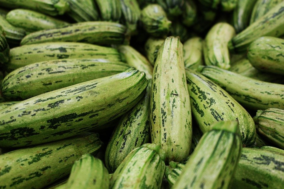 Zucchini, Vegetarian, Fresh, Vegetable, Food, Healthy
