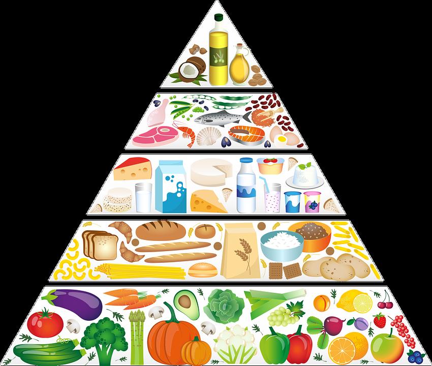 Piramida Żywności, Odżywianie, Składników Odżywczych