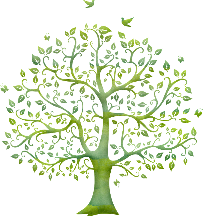Árbol, Árbol De La Vida, Marco, Espiritual, Metafísica