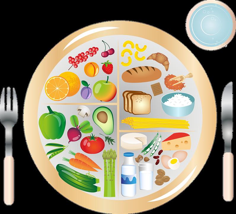 tápanyag diéta