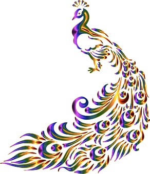 Påfågel, Fågel, Djur, Dekorativa