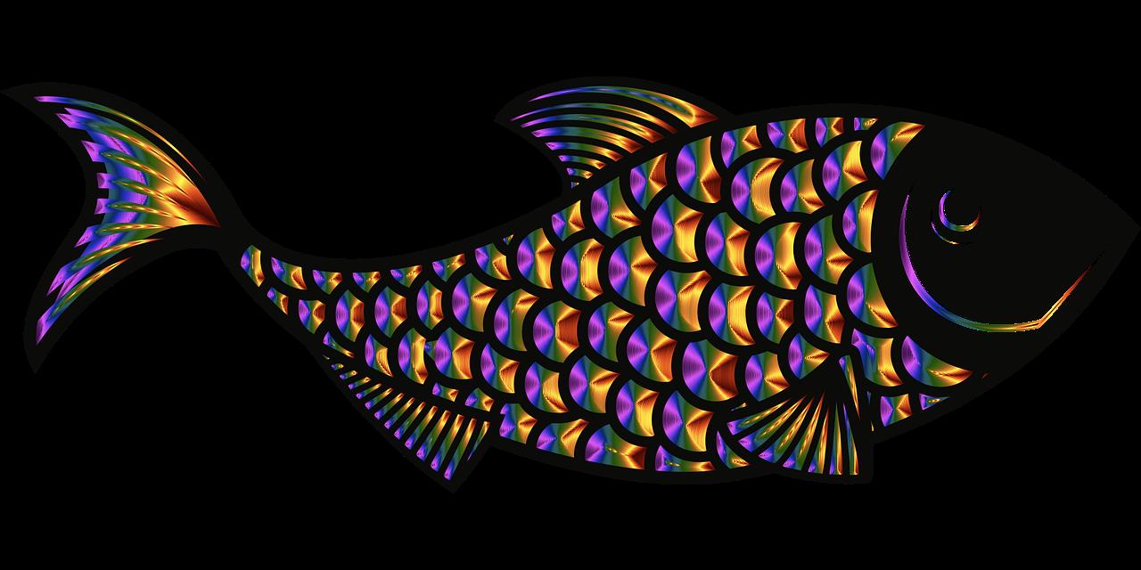 fish-5354282_1280.png