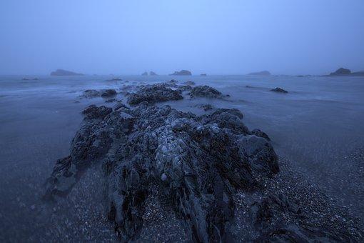 Beach, Water, California, Redwoods, Sand