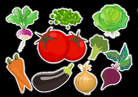 野菜, コレクション, 教育, 健康, 食品, ビタミン, 新鮮な, タマネギ