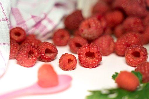 Raspberry, Harvest, Summer, Ripe, Eat
