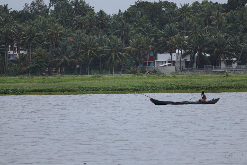 Kerala Nature Landscape