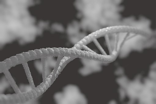 Dna, 3D, Biology, Genetic, Research