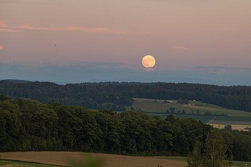Moon, Horizon, Landscape, Evening