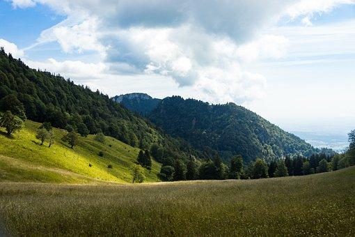 Hill, Landscape, Light, Mood, Nature