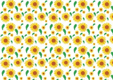 Sonnenblume, Muster, Blume, Sommer