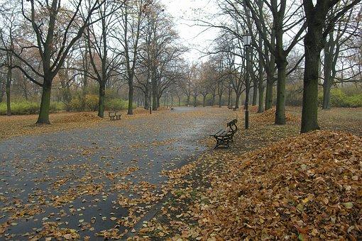 Park, Green, Emptiness, Nostalgia
