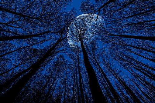 Nacht, Mond, Nachthimmel, Mondschein