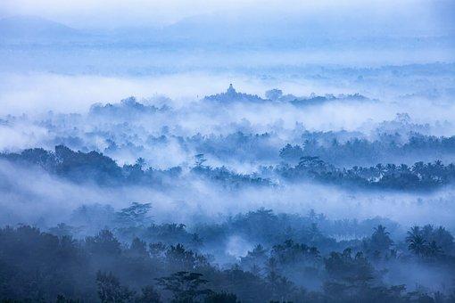 Landscape, View, Morning Mist