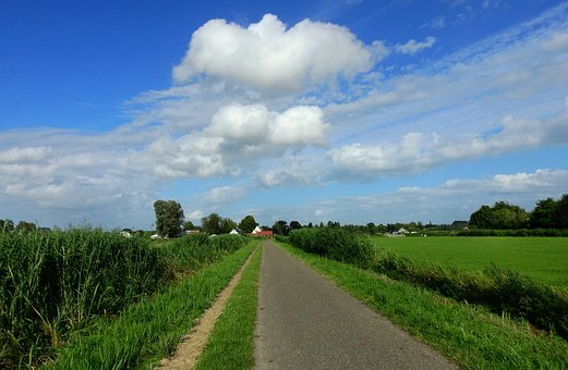 Dutch Countryside, Rural, Road, Rushes