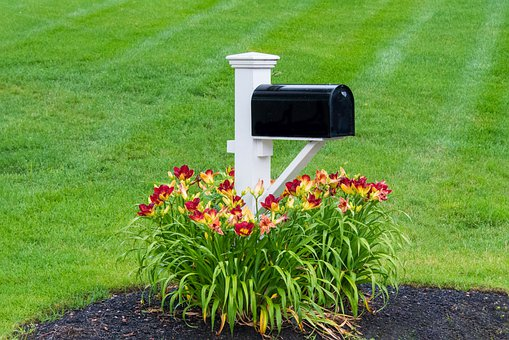 Mailbox, Flowers, Postbox, Mohan