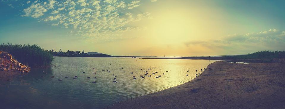 Laguna, Sea, Ducks, Sky, Clouds