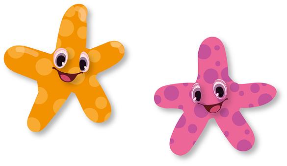 Seestern, Tier, Aquarium, Stern
