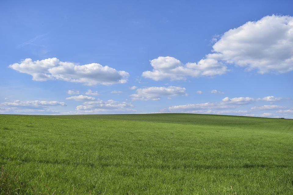 Feld, Gras, Natur, Landschaft, Himmel, Wolken, Sommer