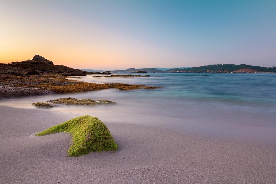 Strand, Galicien, Ria, Aldán, Algen, Felsen, Meer