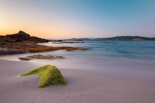 Beach, Galicia, Ria, Aldán, Algae, Rocks