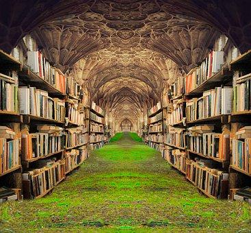 Books, Shelves, Grass, Castle, Corridor