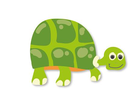 Schildkröte, Panzer, Wasser-Schildkröte