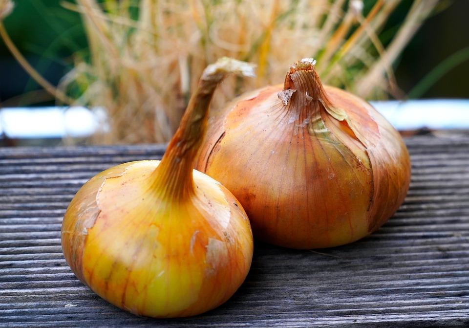 Onions, Fresh, Vegetables, Healthy, Food, Cuisine