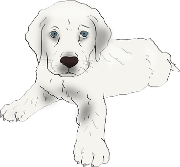 How To Draw Puppies