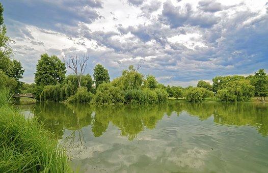Landschaft, See, Bäume, Vegetation