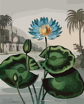Flower, Blue, Plant, Blossom, Decorative