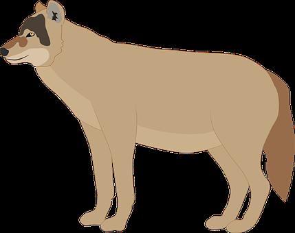 100 Free Wolf Animal Vectors Pixabay
