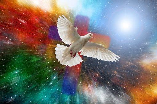 Dove, Universe, Cross, Explosion, Cosmos