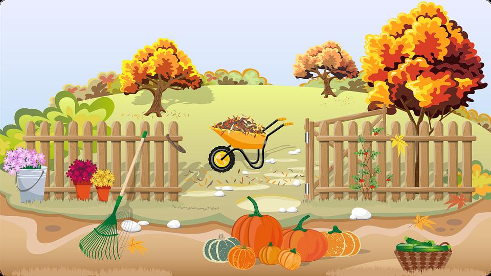 Autumn, Fall, Seasons, Garden, Orchard, Trees, Fence