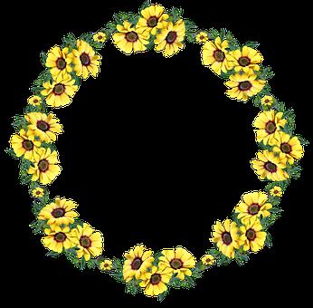Frame, Border, Flowers, Daisies, Wreath