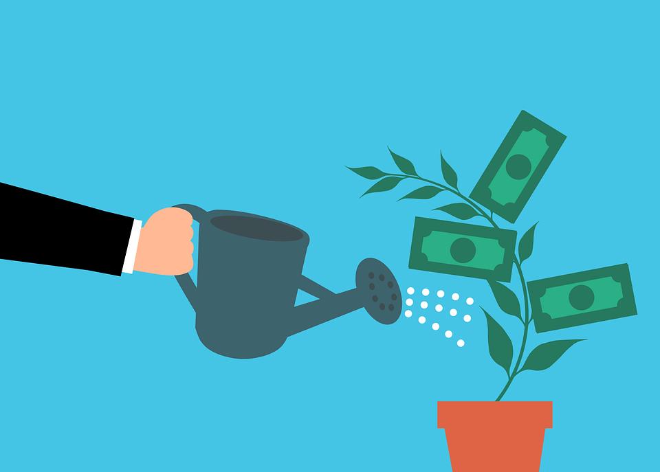 有料ブログとは?|お金の木に水やりしている画像|集客できるブログはWordPressがおすすめ|アインの集客マーケティングブログ